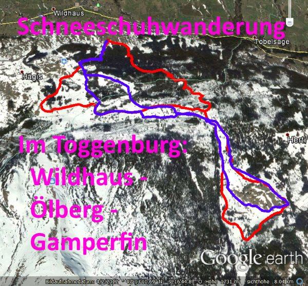 Schneeschuhwanderung Toggenburg Wildhaus (Google Earth)